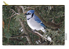 Carry-all Pouch featuring the photograph Blue Jay In The Cedars by Brenda Brown
