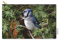 Carry-all Pouch featuring the photograph Blue Jay In Cedar Tree 2 by Brenda Brown
