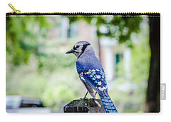 Carry-all Pouch featuring the photograph Blue Jay by Sennie Pierson