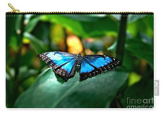 Blue Lit Butterfly Carry-all Pouch