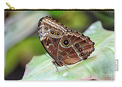 Blue Morpho Butterfly Carry-all Pouch by Teresa Zieba