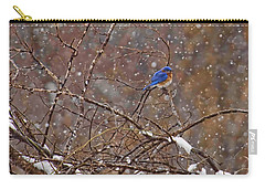 Carry-all Pouch featuring the photograph Blue Norther by Gary Holmes