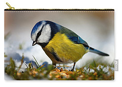 Carry-all Pouch featuring the photograph Blue Tit by Gavin Macrae