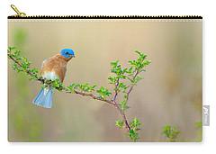 Bluebird Breeze Carry-all Pouch