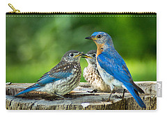 Bluebird - Father And Sons Carry-all Pouch