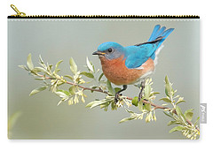 Bluebird Floral Carry-all Pouch by William Jobes