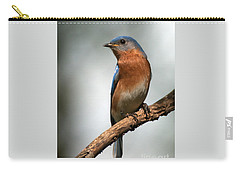 Bluebird- I See You Carry-all Pouch