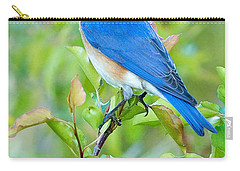 Bluebird Joy Carry-all Pouch by William Jobes
