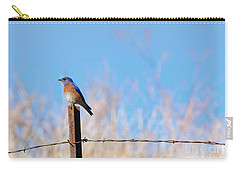 Bluebird On A Post Carry-all Pouch by Mike  Dawson