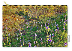 Bluebonnets And Creosote Bushes In Big Bend National Park-texas Carry-all Pouch