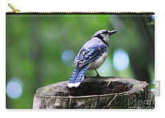 Carry-all Pouch featuring the photograph Bluejay by Alyce Taylor