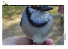 Carry-all Pouch featuring the photograph Bluejay by Mim White
