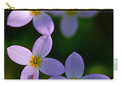 Carry-all Pouch featuring the photograph Bluets With Aphid by Marty Saccone