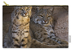 Carry-all Pouch featuring the photograph Bobcat 8 by Arterra Picture Library