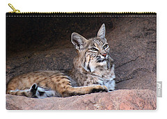 Carry-all Pouch featuring the photograph Hmm What To Do by Elaine Malott