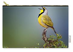 Bokmakierie Bird - Telophorus Zeylonus Carry-all Pouch
