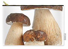 Carry-all Pouch featuring the photograph Boletus Edulis Var. Aereus by Antonio Scarpi