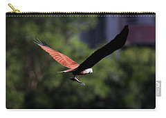 Brahminy Kite With Catch  Carry-all Pouch by Ramabhadran Thirupattur
