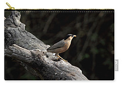 Brahminy Starling Carry-all Pouch