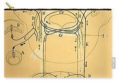 Brain Vestibular Sensor Connections By Cajal 1899 Carry-all Pouch by Science Source