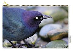 Brewers Blackbird Carry-all Pouch