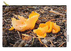 Brilliance In Orange Carry-all Pouch by Cheryl Hoyle
