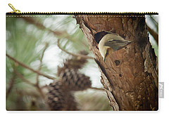 Brown Headed Nuthatch Carry-all Pouch by Linda Unger