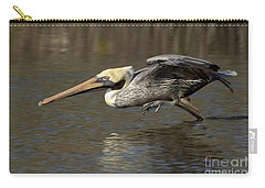 Carry-all Pouch featuring the photograph Brown Pelican Fishing Photo by Meg Rousher