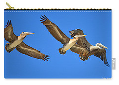 Carry-all Pouch featuring the photograph Brown Pelicans In Flight by Debra Martz