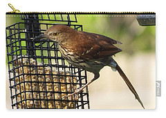 Carry-all Pouch featuring the photograph Brown Thrasher by Lizi Beard-Ward