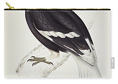 Great Hornbill Carry-all Pouch by John Gould