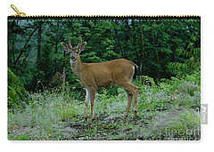 Carry-all Pouch featuring the photograph Buck by Rod Wiens