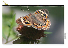 Carry-all Pouch featuring the photograph Buckeye by Karen Silvestri