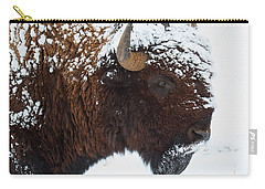 Buffalo Nickel Carry-all Pouch by Jim Garrison