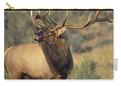 Carry-all Pouch featuring the photograph Bull Elk In Rut Bugling Yellowstone Wyoming Wildlife by Dave Welling