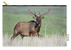 Carry-all Pouch featuring the photograph Bull Elk In Velvet by Jack Bell