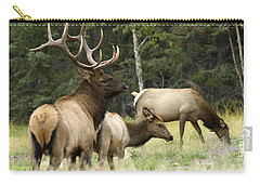 Bull Elk With His Harem Carry-all Pouch by Bob Christopher