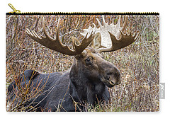 Bull Moose In Autumn Carry-all Pouch by Jack Bell