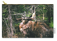 Bull Moose In Spring Carry-all Pouch