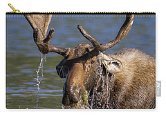 Bull Moose Sampling The Vegetation Carry-all Pouch by Jack Bell
