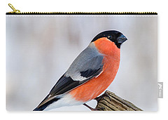 Bullfinch On The Edge Carry-all Pouch
