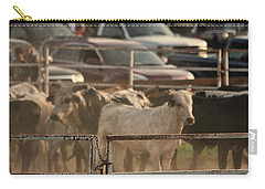 Bulls Carry-all Pouch by Denise Romano