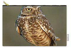 Burrowing Owl At Sunset Carry-all Pouch