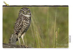 Burrowing Owl Stare Carry-all Pouch by Meg Rousher