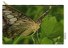 Carry-all Pouch featuring the photograph Butterfly 2 by Olga Hamilton