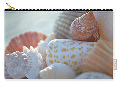 By The Seashore Carry-all Pouch