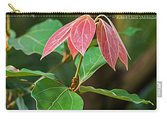 Carry-all Pouch featuring the photograph By The Seeds That You Plant by Jordan Blackstone