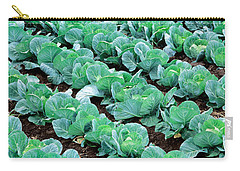Cabbage, Yamhill Co, Oregon, Usa Carry-all Pouch by Panoramic Images