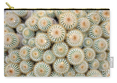 Cactus 35 Carry-all Pouch