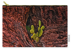 Cactus Dwelling Carry-all Pouch by Mark Myhaver